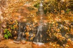 Scenic Waterfall in Autumn Stock Image