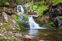 Scenic waterfall flowing through forest Stock Photography