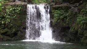 Scenic waterfall on the Island of Maui. A scenic waterfall along the road to Hana on the island of Maui stock video footage