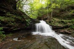 Scenic Waterfall in Ricketts Glen State Park in The Poconos in P