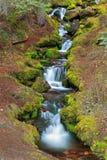 Scenic waterfall Royalty Free Stock Photos