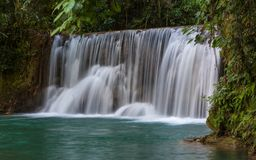 Scenic waterfalls and lush vegetation in Jamaica Royalty Free Stock Photos