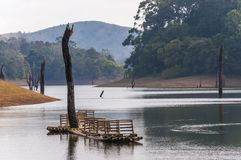 Scenic waterscape with bamboo raft in Periyar National Park, India. This amazing wildlife park is located in Kerala southern state of India. Sprawled over an stock photo