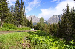 Scenic by way Going to sun road Royalty Free Stock Photography