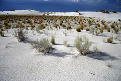 Scenic White Sands Stock Images