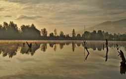 Scenic marshland during autumn time royalty free stock photography