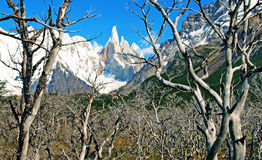 Scenic wilderness landscape with Cerro Torre. Scenic nature landscape with Cerro Torre in Los Glaciares National Park, Patagonia, Argentina royalty free stock image