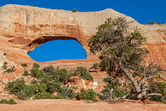 Scenic Wilson Arch Royalty Free Stock Photo