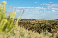 The scenic and winding Great Ocean Road in grassland landscape, Victoria, Australia Stock Images