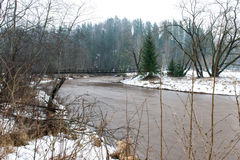 Scenic winter colored river in country Royalty Free Stock Photography