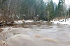 Scenic winter colored river in country Stock Photography