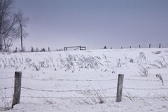 Scenic winter farm landscape Royalty Free Stock Photos