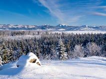 Scenic winter at frozen Lake Laberge Yukon Canada Royalty Free Stock Photos