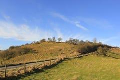 Scenic winter hillside Stock Images