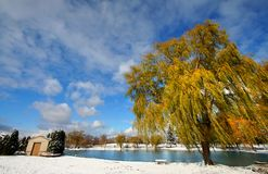 Scenic winter landscape Royalty Free Stock Image