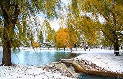 Scenic winter landscape Stock Photos