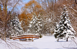 Scenic winter landscape Stock Images