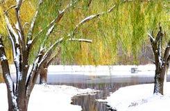 Scenic Winter Landscape Stock Image