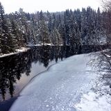 Scenic winter landscape of a creek with forest and animal tracks royalty free stock images