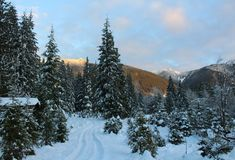 Scenic Winter Landscape. A scenic winter landscape that features softly clouded blue skies, snow capped mountains, coniferous and decidous trees highlighted with Royalty Free Stock Images