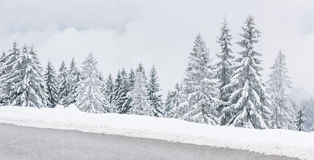 Scenic winter landscape with snow clad trees Royalty Free Stock Photography