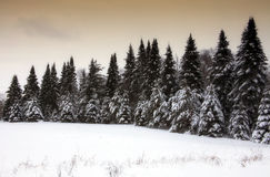 Scenic winter landscape Royalty Free Stock Photos