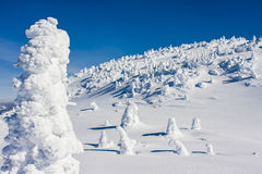 Scenic Winter View in Canada's Cold Mountain Winters Royalty Free Stock Photos