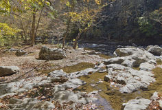 Scenic Woodland River in Autumn Royalty Free Stock Photo