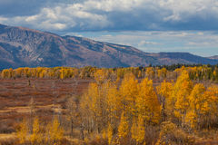 Scenic Wyoming Landscape in Autumn Royalty Free Stock Photo