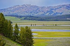 Scenic Yellowstone Park stock images