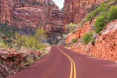 Scenic Zion Road Royalty Free Stock Images