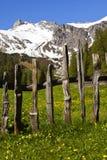 Scenico alpino Fotografia Stock
