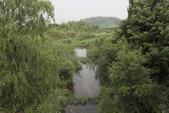 scenics stock fotografie