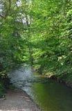 Scenics di Schutter Fotografie Stock