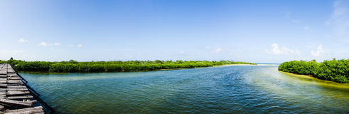 Scenics from the mexican caribbean Royalty Free Stock Images