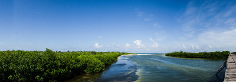 Scenics from the mexican caribbean Stock Photos