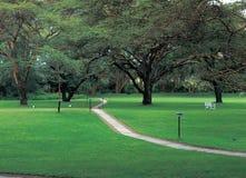 Scenics. Park royalty free stock photography