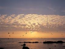 Scenics. Sea royalty free stock photo