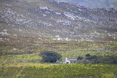 Sceniczna Clarence przejażdżki góra i dom między Gordon ` s zatoką i Rooiels w Zachodnim przylądku, Południowa Afryka zdjęcia stock