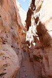 Sceniczna dolina Pożarniczy stanu park w Nevada, usa fotografia stock