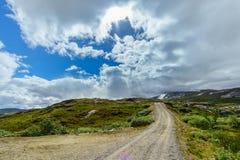 Sceniczna droga na Lofoten wyspach w Norwegia z zieleń paśnikami i wysokimi falezami Zdjęcia Stock