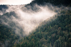 Sceniczna droga w górach Obraz Royalty Free