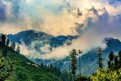 Sceniczna głęboka tropikalna lasowa dżungla przy Janjehli, himalaje, India Fotografia Stock