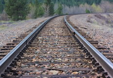 Sceniczna linia kolejowa: Poręcze przez Dzikiego kraju Fotografia Royalty Free