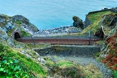Sceniczna linia kolejowa w Irlandia Zdjęcie Stock