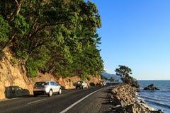 Sceniczna nabrzeżna droga na Coromandel półwysepie, Nowa Zelandia obraz royalty free