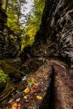 Sceniczna siklawa w jesieni Watkins roztoki stanu park - Watkins roztoka, Nowy Jork - cienia wąwóz - Obrazy Stock