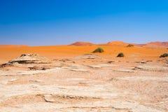 Sceniczna Sossusvlei, Deadvlei, gliny i soli niecka otaczająca majestatycznymi piasek diunami, Namib Naukluft park narodowy, głów Zdjęcia Stock