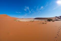 Sceniczna Sossusvlei, Deadvlei, gliny i soli niecka otaczająca majestatycznymi piasek diunami, Namib Naukluft park narodowy, głów Obraz Stock