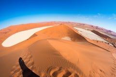 Sceniczna Sossusvlei, Deadvlei, gliny i soli niecka otaczająca majestatycznymi piasek diunami, Namib Naukluft park narodowy, podr Zdjęcia Royalty Free